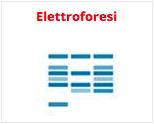 Catalogo elettroforesi